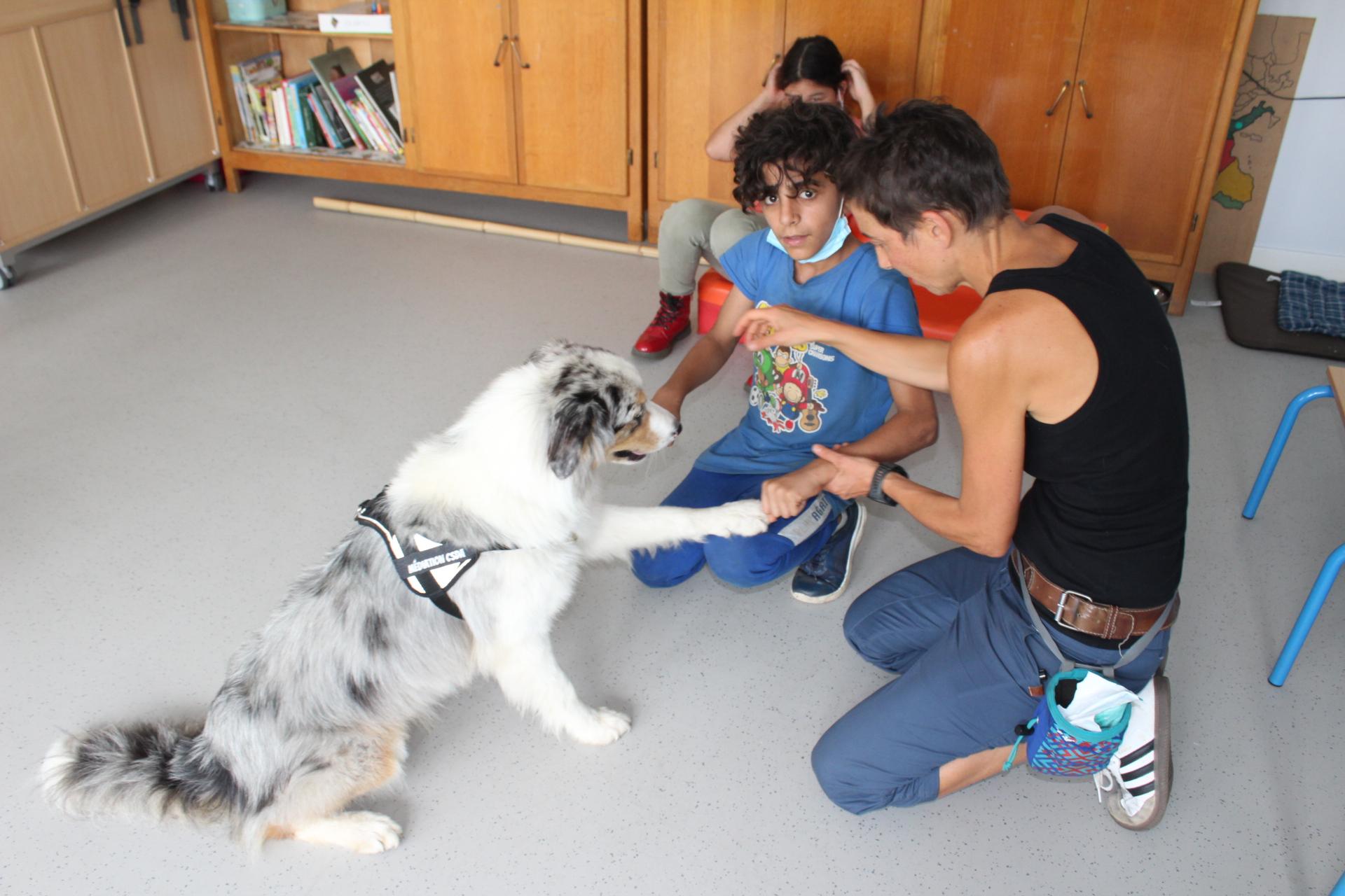 Un chien accompagnateur au CSDA